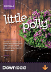 Polygala-Little-Polly