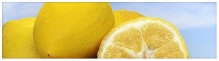 Banners-Lemonicious